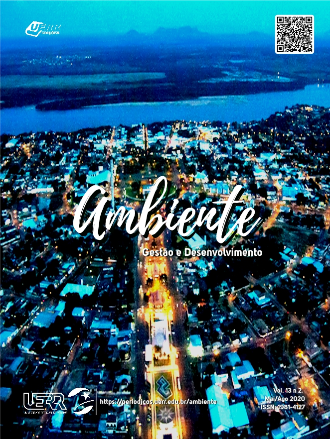 "Capa do volume 13, nº 2 da revista ""Ambiente"""