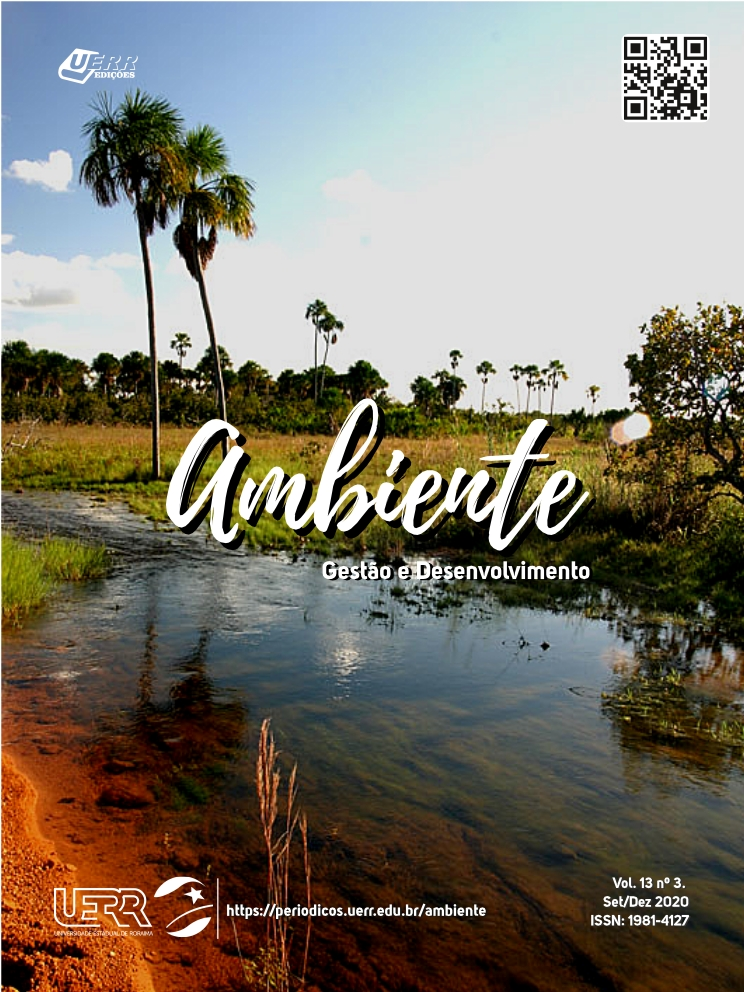 "Capa do volume 13, nº 3 da revista ""Ambiente"""